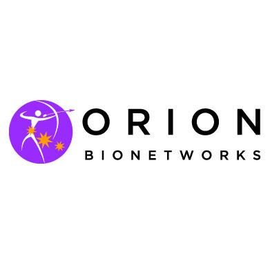 Orion logo original